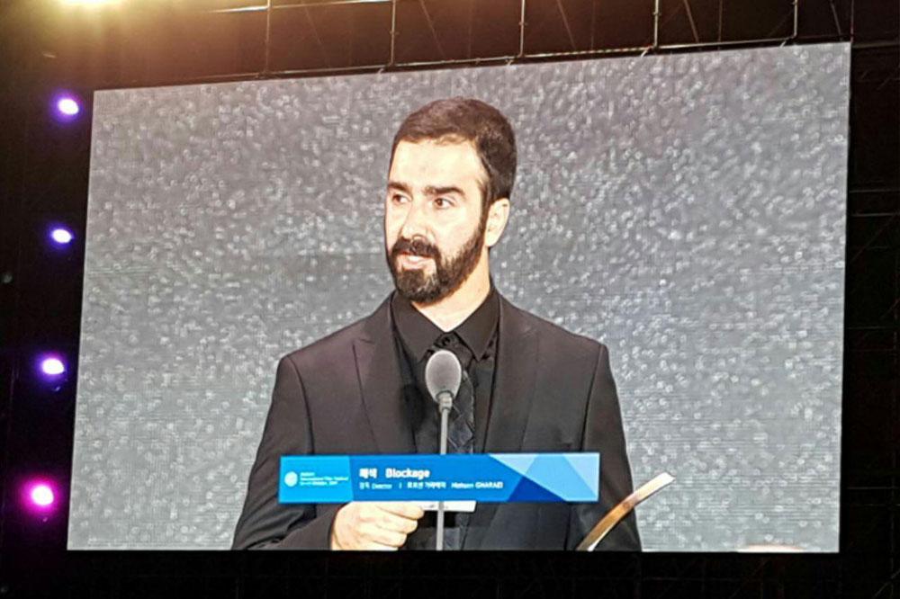 تبریک جشنواره جهانی فیلم فجر به «سد معبر»