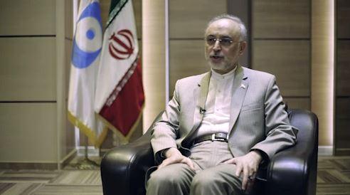 برپایی جشنواره های هنری یکی از ابزارهای دیپلماسی است / علیاکبر صالحی